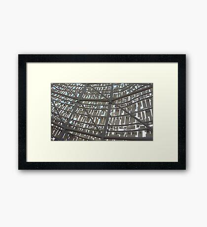 Kelpie - inside frame Framed Print
