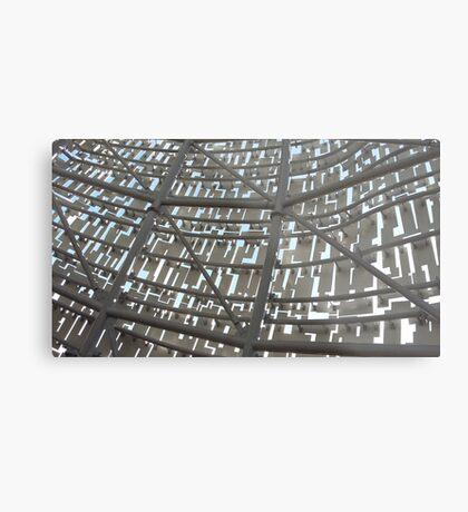 Kelpie - inside frame Metal Print