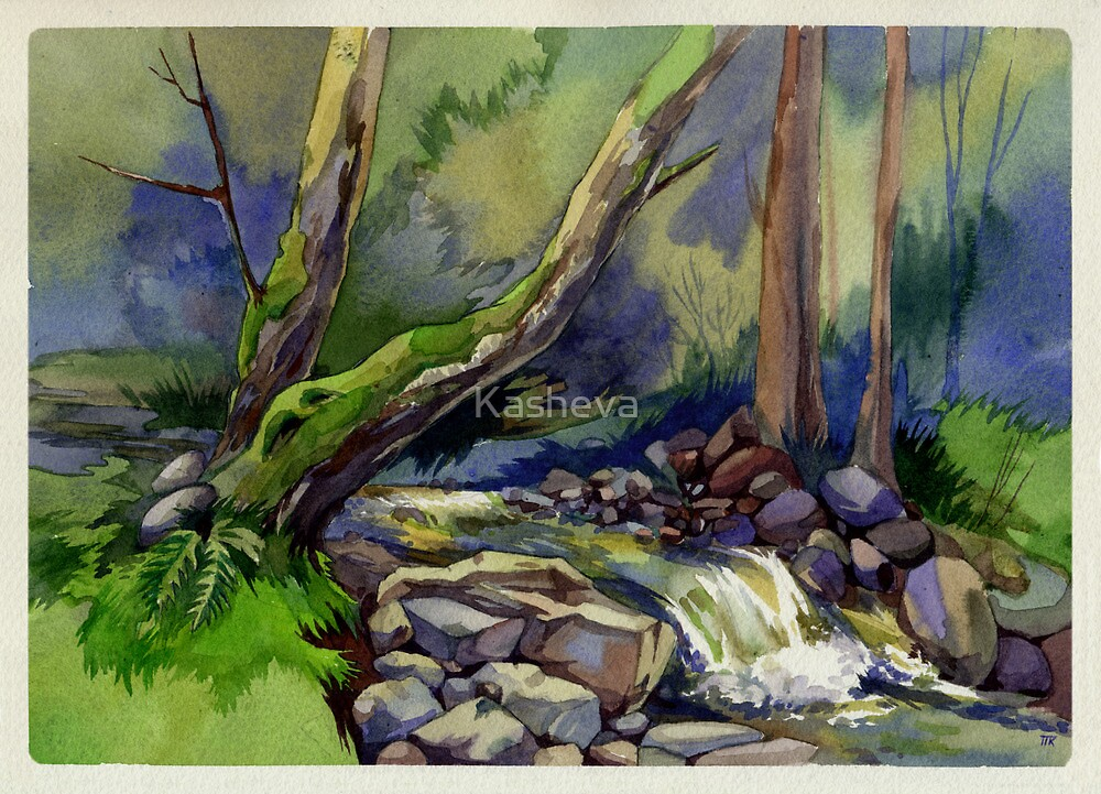 Forest stream by Kasheva