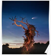 Comet Catcher. Lake Gentry. Poster