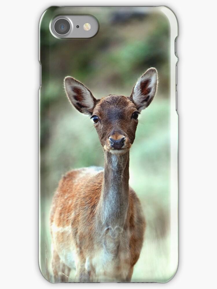 Fallow Deer dama dama case (H) by shelfpublisher