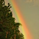 End of the Rainbow. by chris kusik