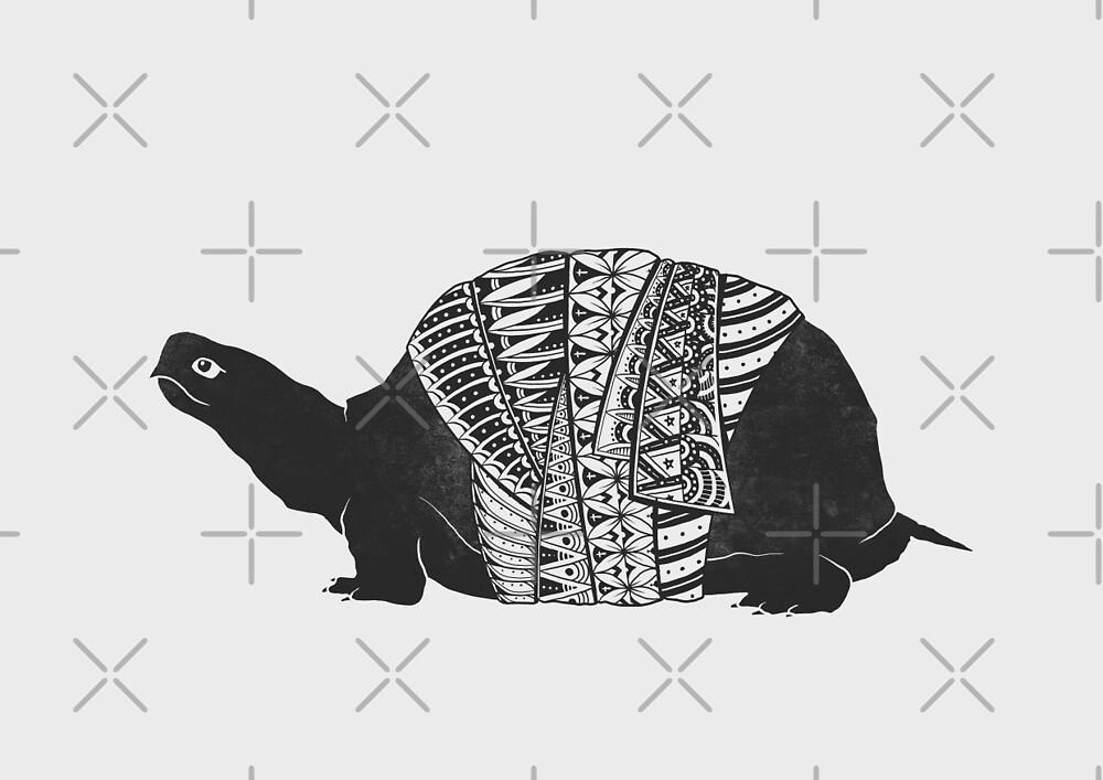 Wise Turtle by GODZILLARGE