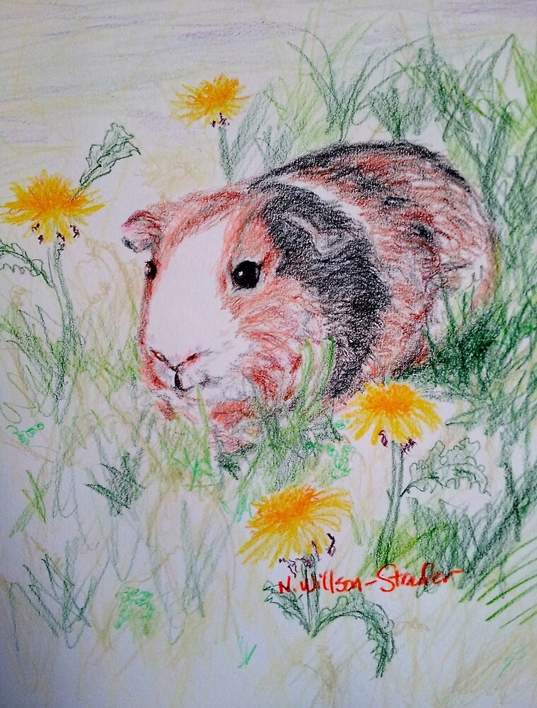 Guinea Pig in the Dandelions by NWillsonStrader