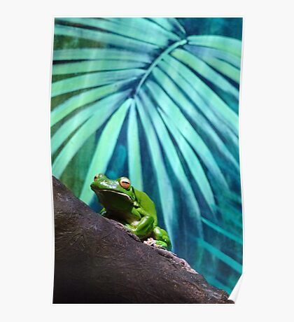 All Glory to the Hypnotoad Poster
