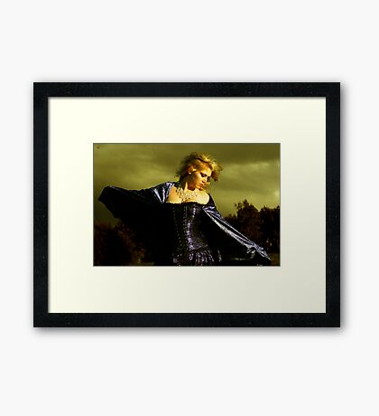 Destined to Fly Framed Print