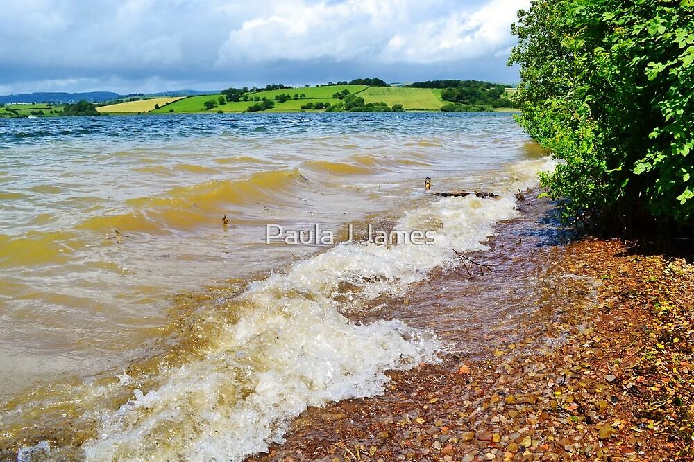 Waves at Llandegfedd Reservoir by Paula J James
