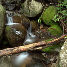 Mountain Creek by Melanie Roberts