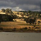 Bogolong Dam at Grenfell by Darren Stones