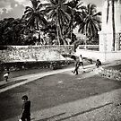 Cricket at the Fort by Dilshara Hill