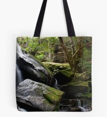Valley Fall Tote Bag