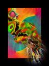 Celebration of Spirit by Vicki Pelham