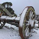 Tarkine lodge Wagon by phillip wise