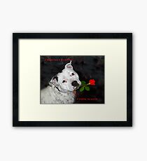 For the Love of Staffies Framed Print