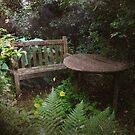Shady Haven by Carol Bleasdale