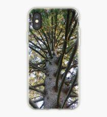 Inside a Spruce Tree iPhone Case
