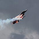 F16 Fighter Plane by John Dunbar