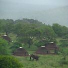 Village visitor by Explorations Africa Dan MacKenzie