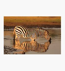 Sweet waters Photographic Print