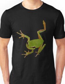 European Green Tree Frog Isolated T-Shirt