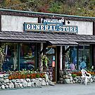 Country Store by AnnDixon