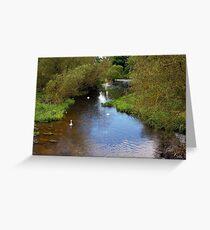 Peaceful River 5 Greeting Card