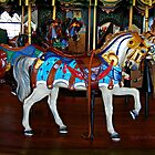 Carousel at he Pier by Lee roberts