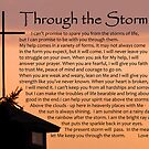 Through the Storm by Leon Heyns