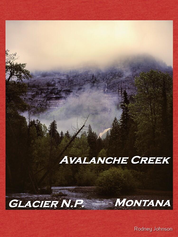 Avalanche Creek, Glacier N.P., Montana by rodneyj46