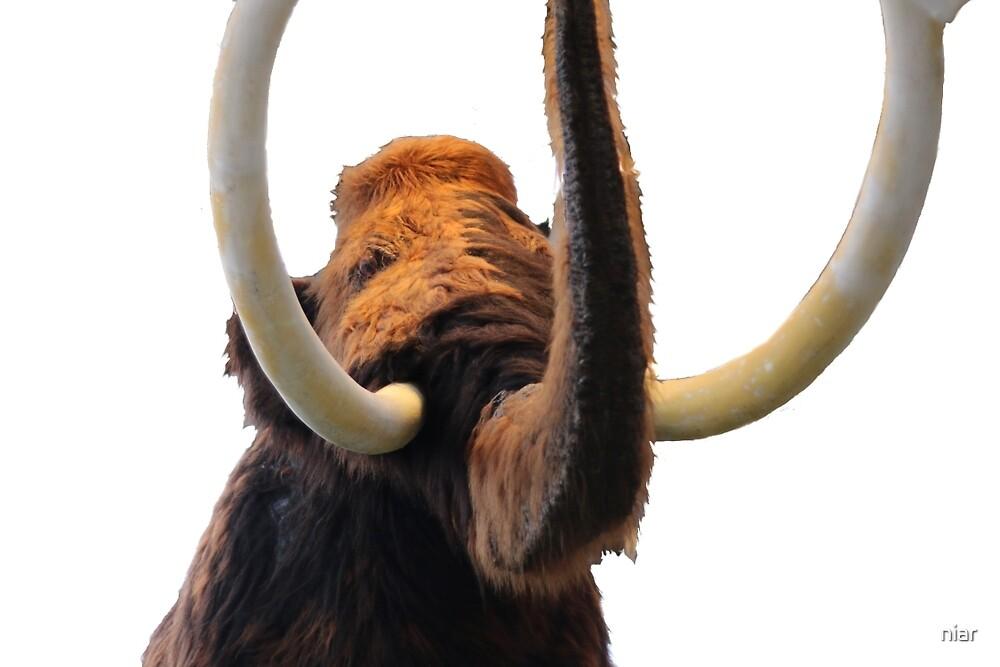 Mammut by niar