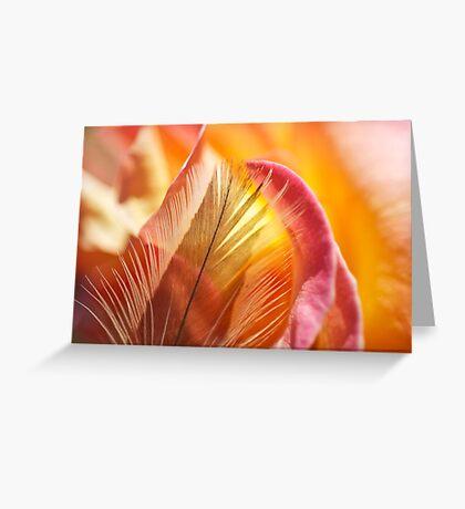 Rose Burst Greeting Card