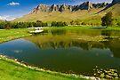 Te Mata Peak by Werner Padarin