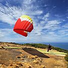 Paraglider at Torquay by Darren Stones