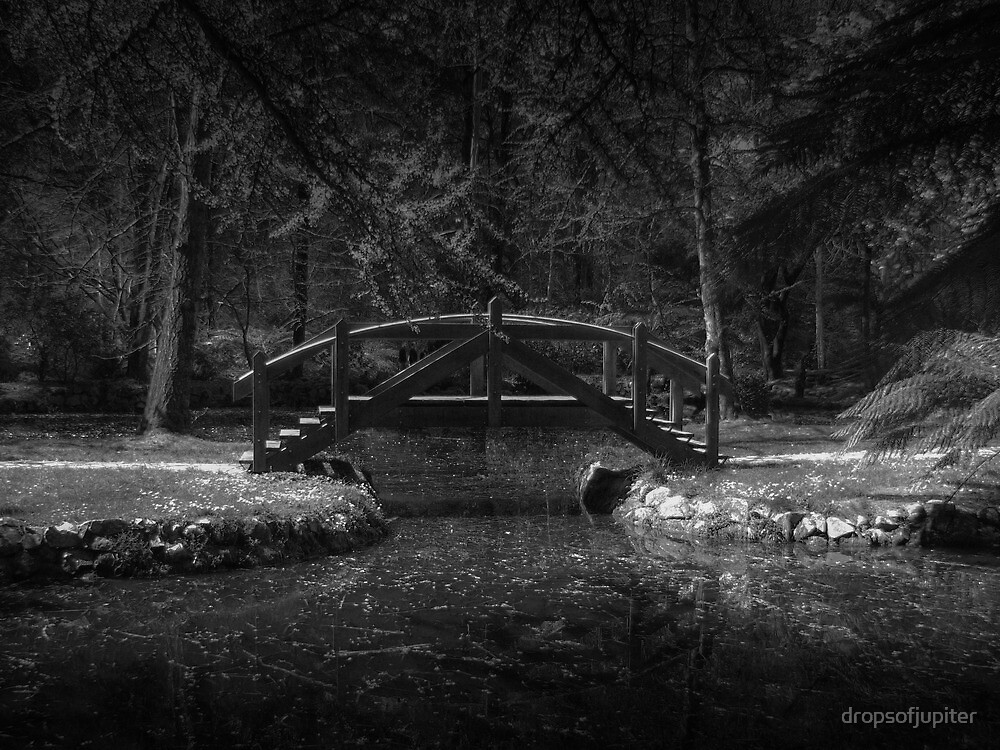 Dark bridge by Louise Delahunty