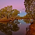 Moon rise over a Billabong by Stephen  Nicholson