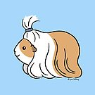 Guinea-pig Tail - long haired cavy by Zoe Lathey
