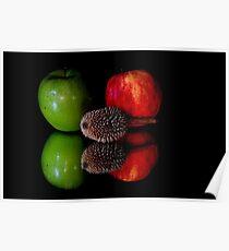 fruits on black background Poster