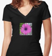 Violet Pink Osteospermum Flower Daisy Women's Fitted V-Neck T-Shirt