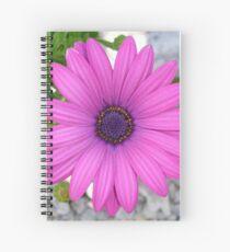 Violet Pink Osteospermum Flower Daisy Spiral Notebook