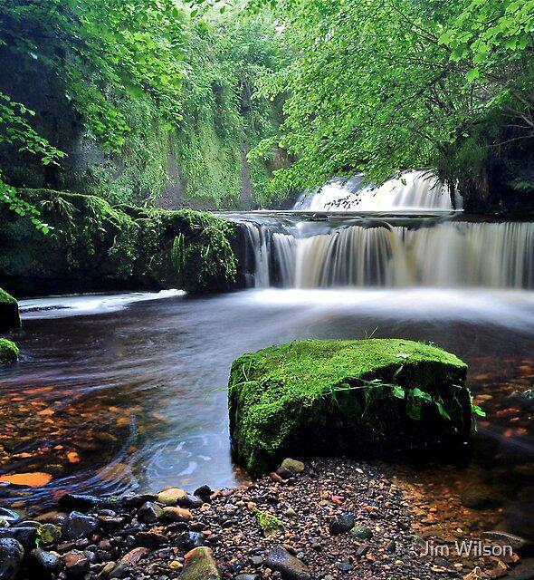 Serenity by Jim Wilson