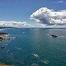 Oregon Coast by doctorphoto