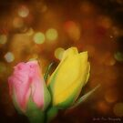 Rose Party by Tonye Banks