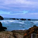 Gold Beach Oregon by Delights