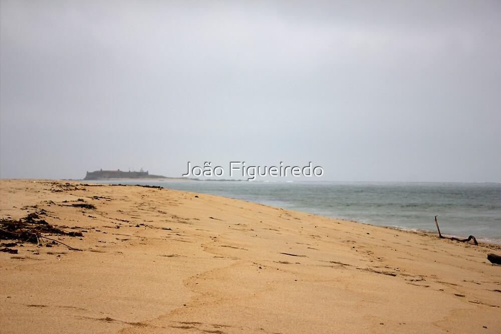 Forte da Ínsua by João Figueiredo