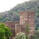 Castelo da Lousã by João Figueiredo
