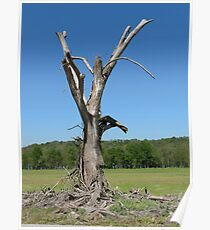 Gandalf Tree Poster