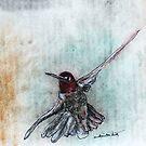 Ruby Throated Humming Bird by David M Scott