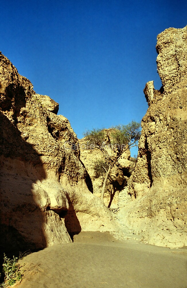 In the Sesriem Canyon, Namibia by Carole-Anne