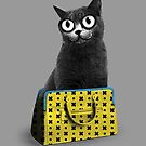 The Cat in the Bag of Tricks by MathijsVissers