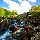 Ashness Bridge by Billy Hodgkins
